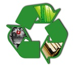 Marriott Library Green Committee Logo, Re-Read, Re-Use, Re-Think