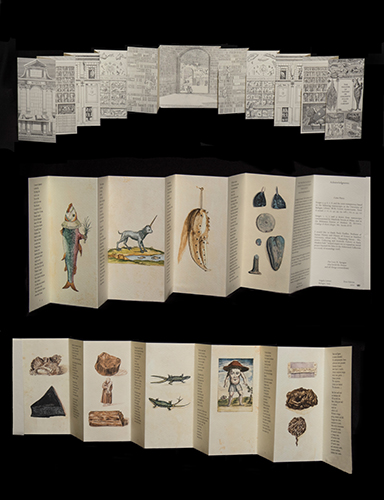 Angela Lorenz, The theater of nature, or curiosity filled the, Novelties of Purpose, a division of Angela Lorenz Artist's Books, 2002