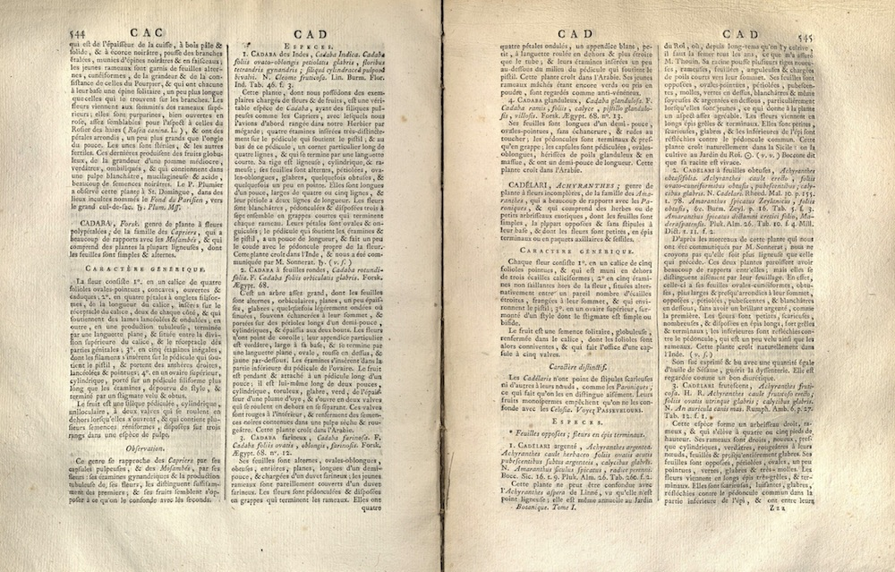 Encyclopedie, 1783-1808