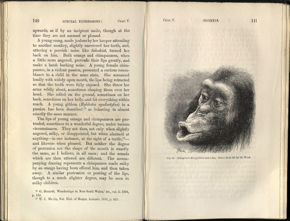 Darwin, The Expression of the Emotions in Man and Animals