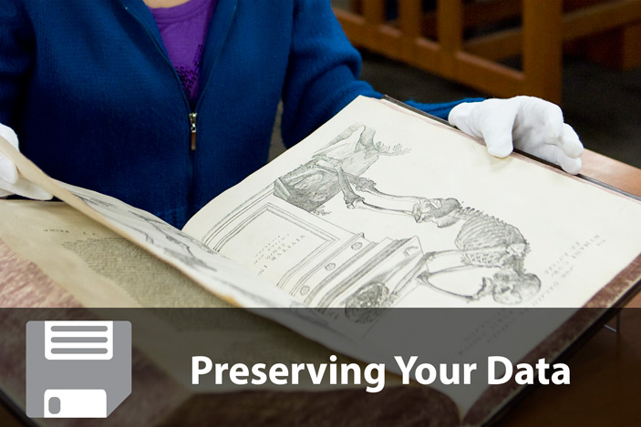 Preserving Data Resources