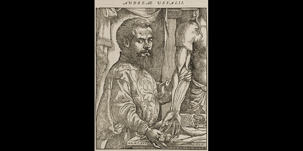 Portrait of Andreas Vesalius in 1555 edition