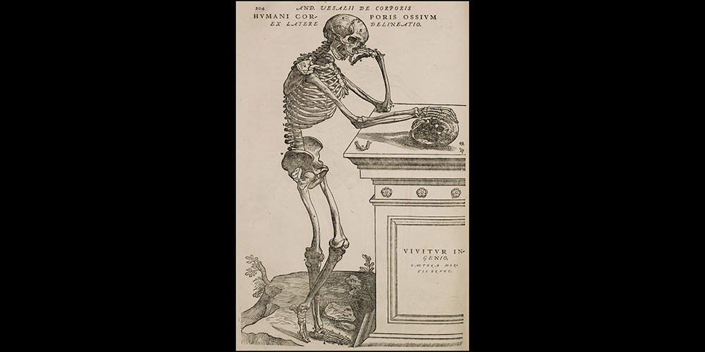 Skeleton with Latin quote: p.204 Genius lives on…. in 1555 edition